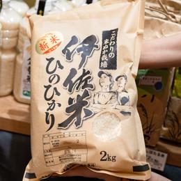 伊佐米 ひのひかり 新米 こだわりの米ぬか栽培