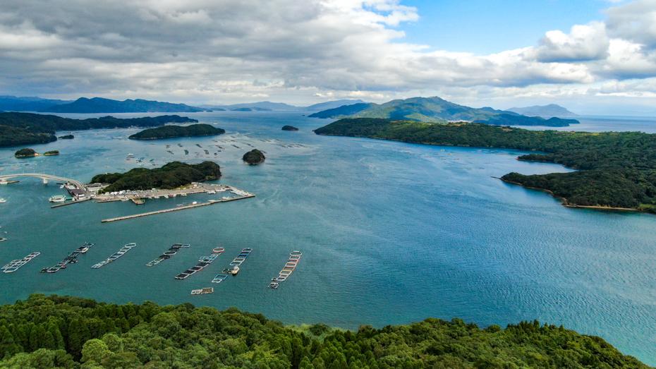 長島町-九州有数の好漁港で天然魚はもちろん、養殖も盛ん