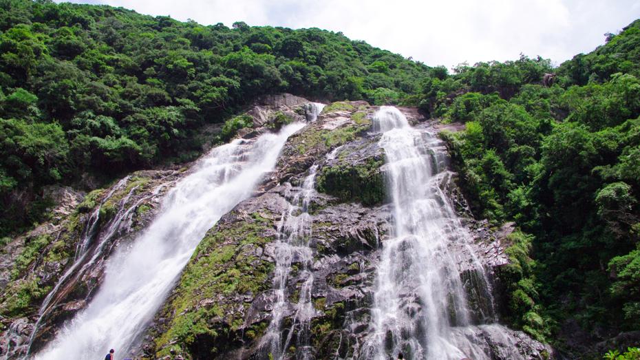 屋久島-九州一の高さを誇る日本の滝百選「大川の滝」